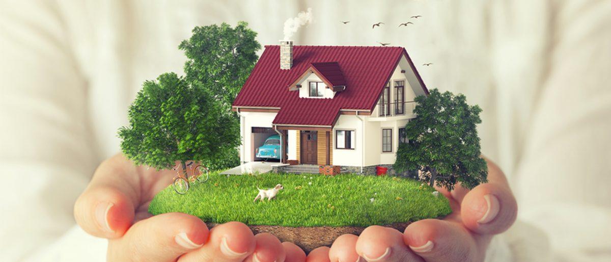 Сроки получения земельного участка